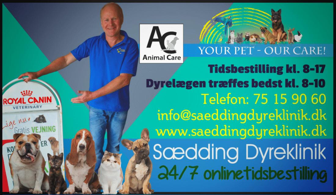 Sædding Dyrhospital: Vores nye annonce til Hjerttingposten